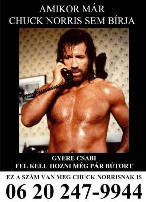 Chuck Norris is minket hív Fehérváron! :)